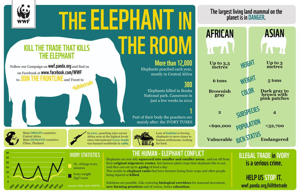 biodiversity-infographic3-elephant-in-the-room