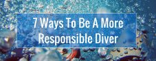 7 Ways To Be A More Responsible Diver   GVI