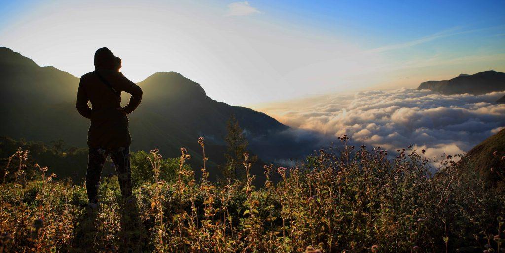 best conservation travel blogs