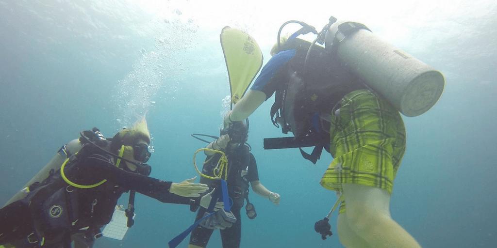 marine biology internship abroad in fiji