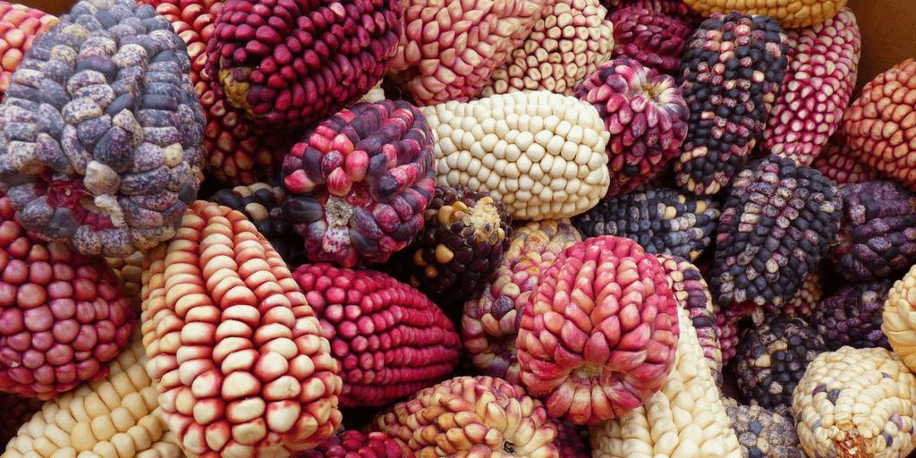 Sample Peru's cuisine when you volunteer abroad in Cusco.