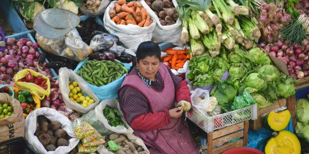 Food security is the focus of UN SDG 2: Zero Hunger.