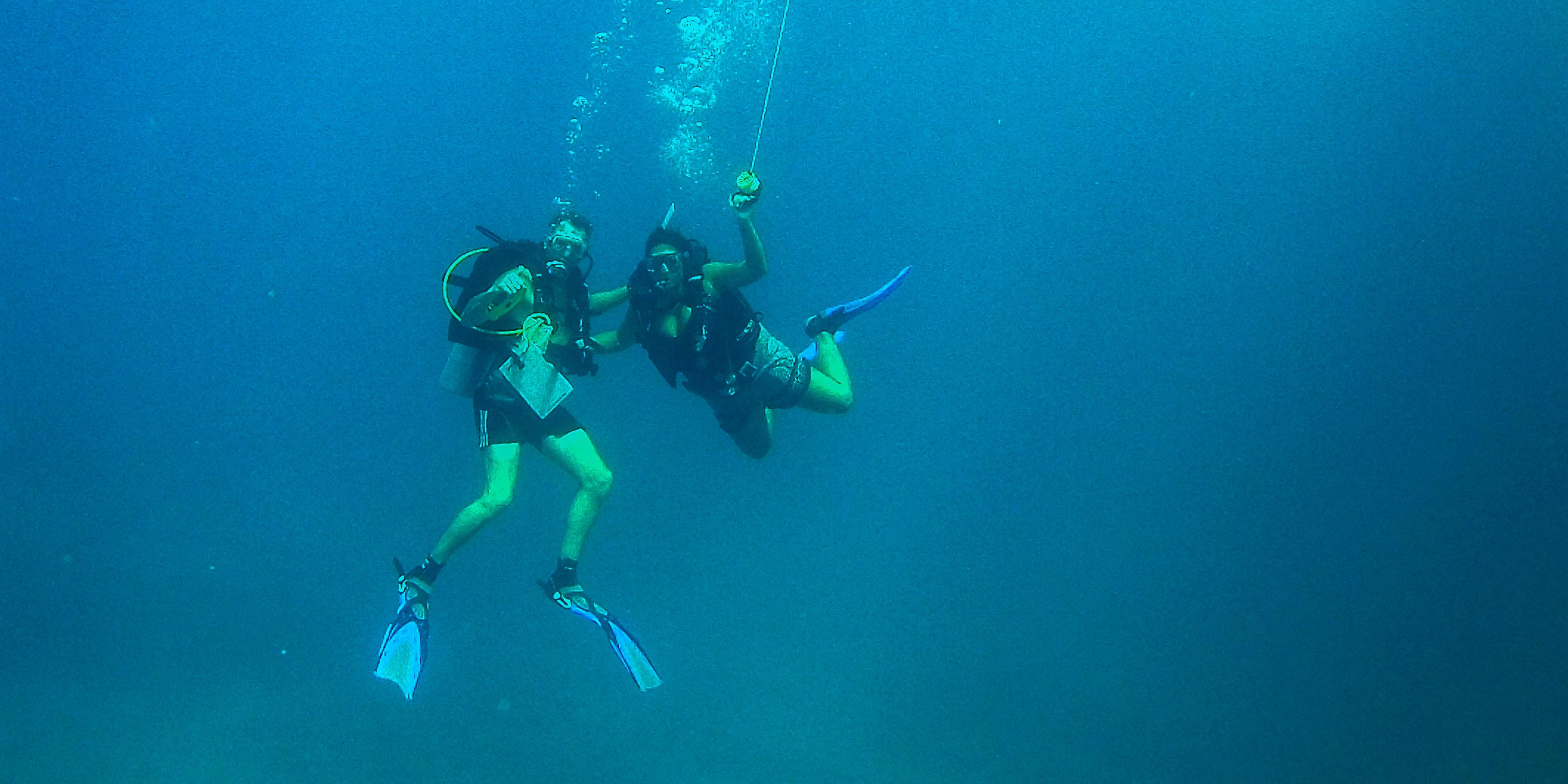seychelles diving