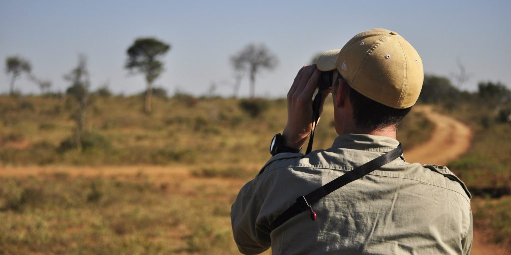 You can also become a field guide and make a career out of wildlife conservation.