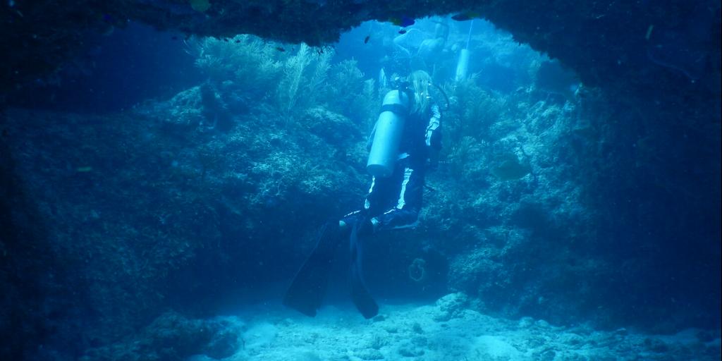 scuba diving qualifications
