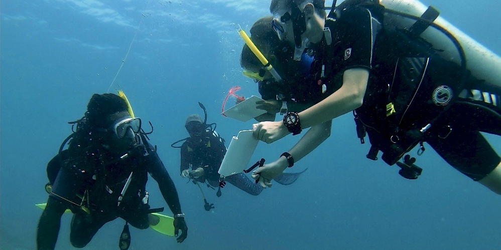 GVI participants work towards their PADI certification while completing marine conservation research in Fiji.