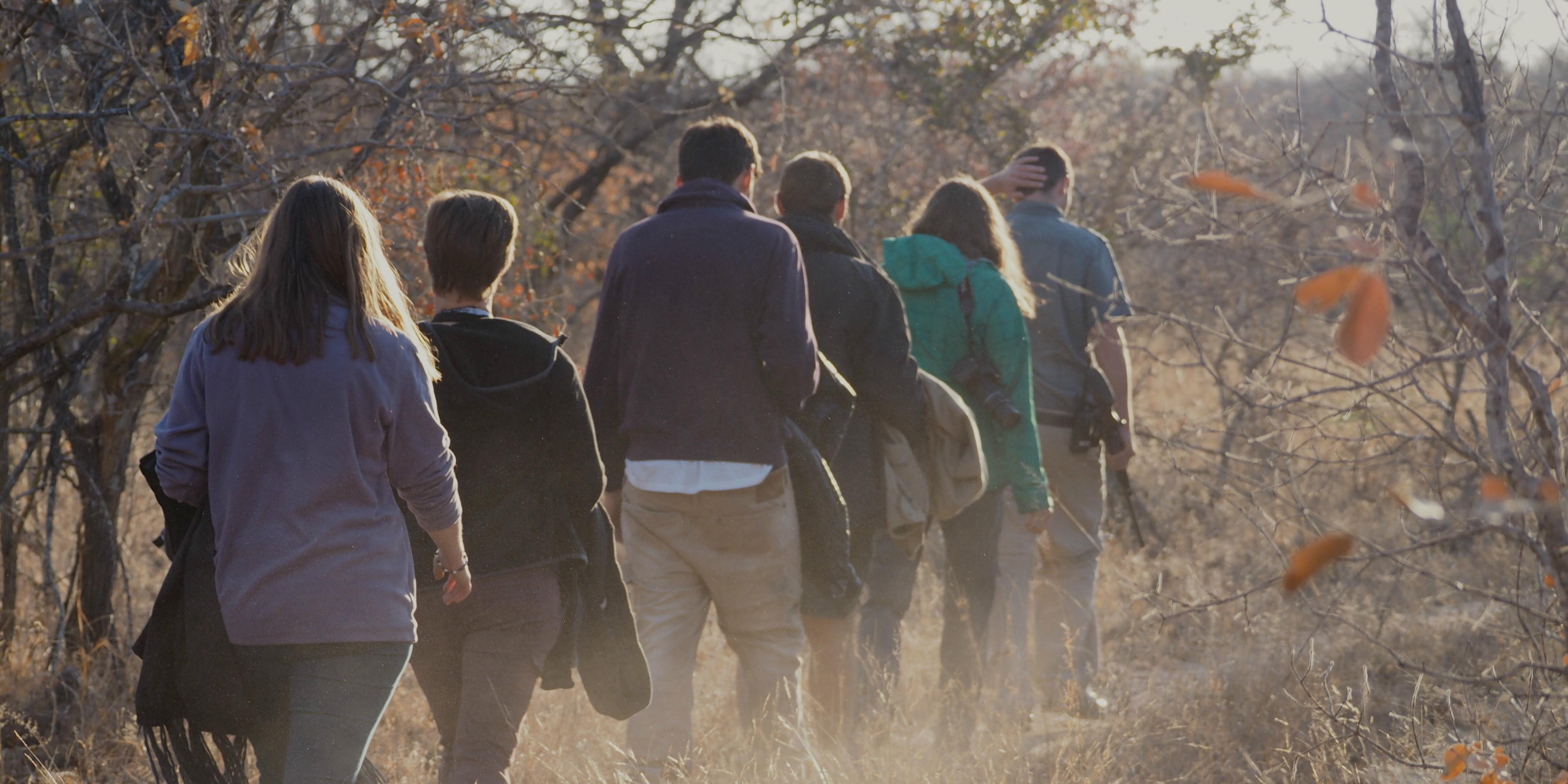 Participants walk through the African bushveld on a responsible travel program.