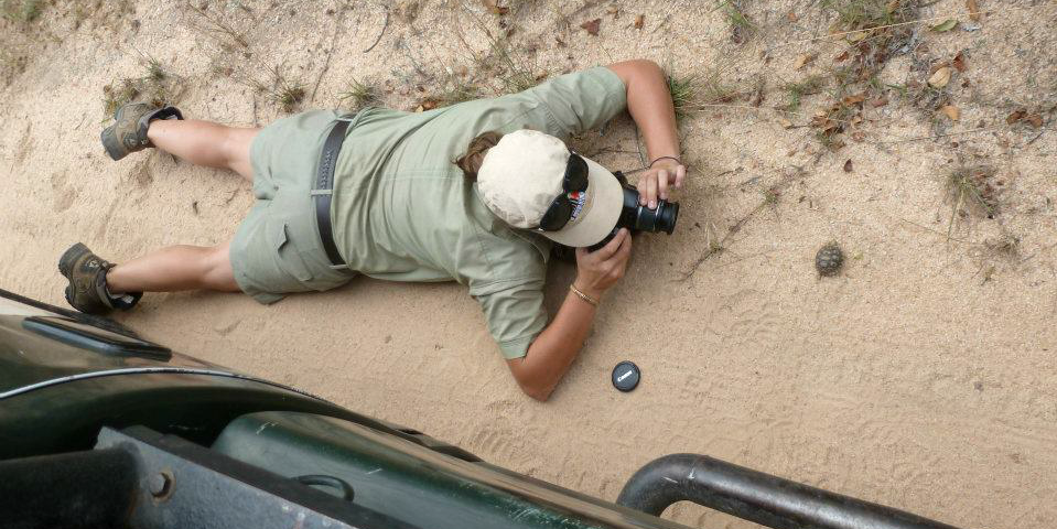 A participant lays down in the dirt to photograph a baby tortoise while on a responsible travel program with GVI.