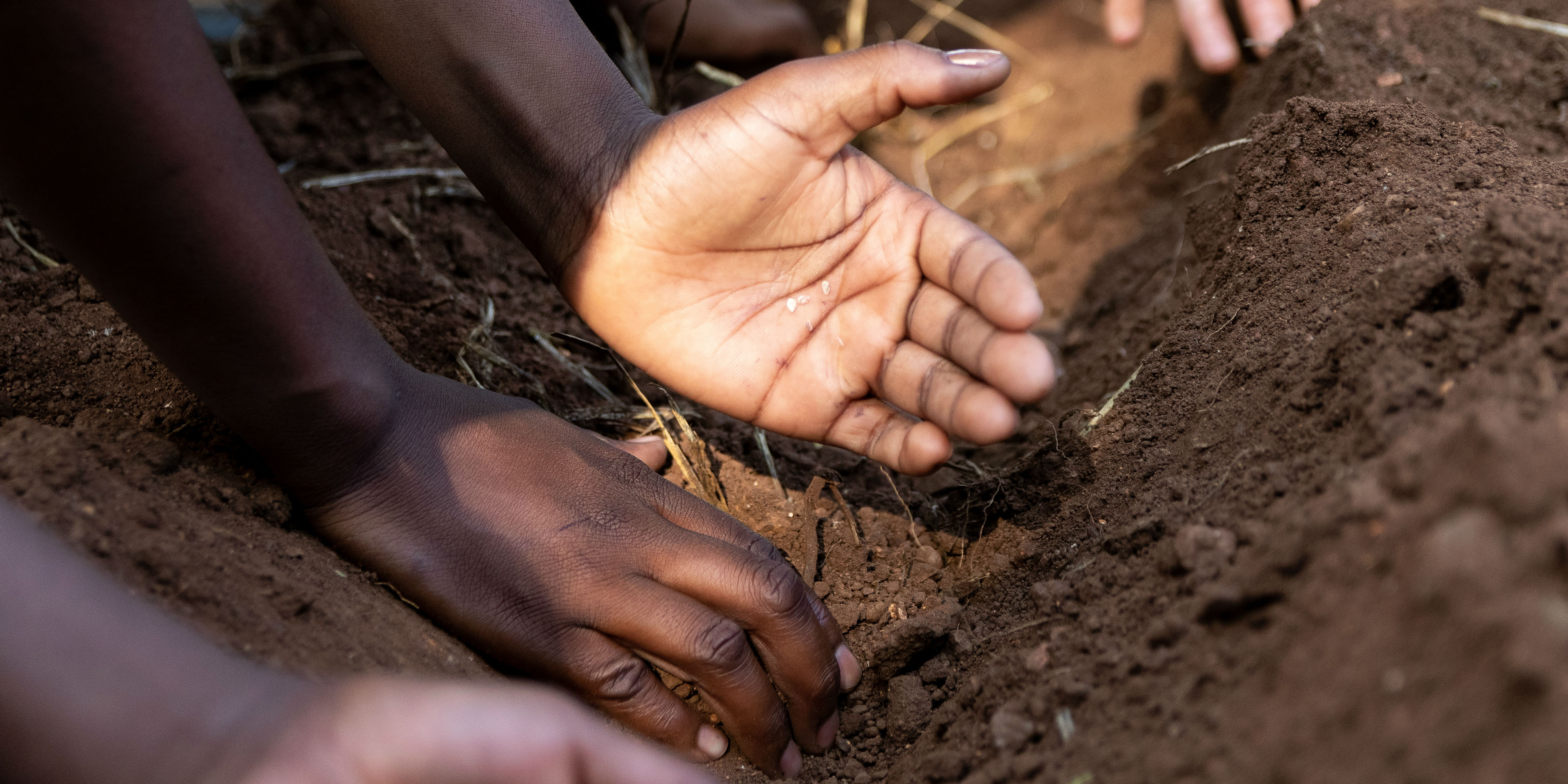 Participants plant seeds while taking part in eco-friendly tourism.