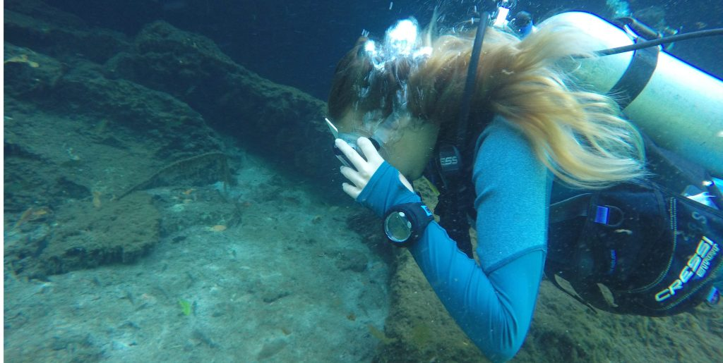 A diver from GVI volunteer group dives in the Mexican waters