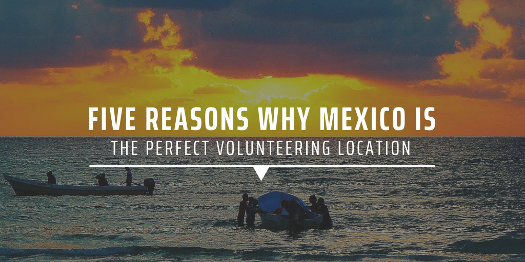 Five reasons why Mexico is the perfect volunteering destination