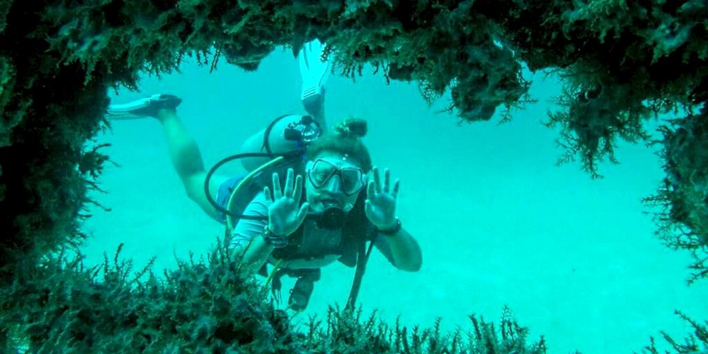 On our marine conservation programs, the incredible variety of aquatic life is perfect for those who are interested in underwater adventures.