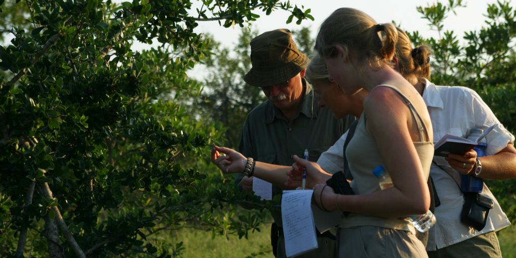 Gain real world experience as a field guide when you volunteer abroad in Limpopo