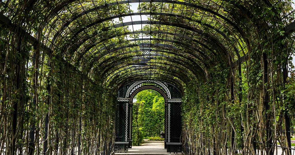 Schonbruun garden, Vienna, Austria