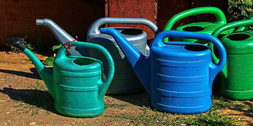 Using water cans instead of a hosepipe is a water saving initiative to deal with water scarcity.