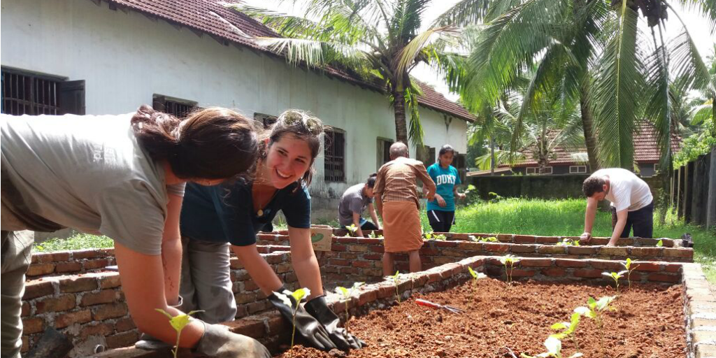 Volunteers wearing rubber gloves and tending to a raised bed garden in a courtyard.