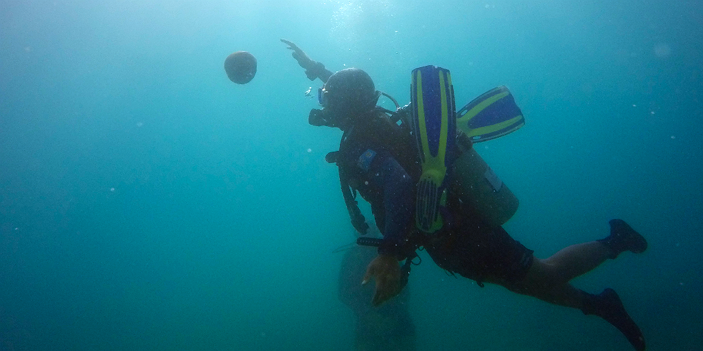 Things to do in fiji includes scuba diving.
