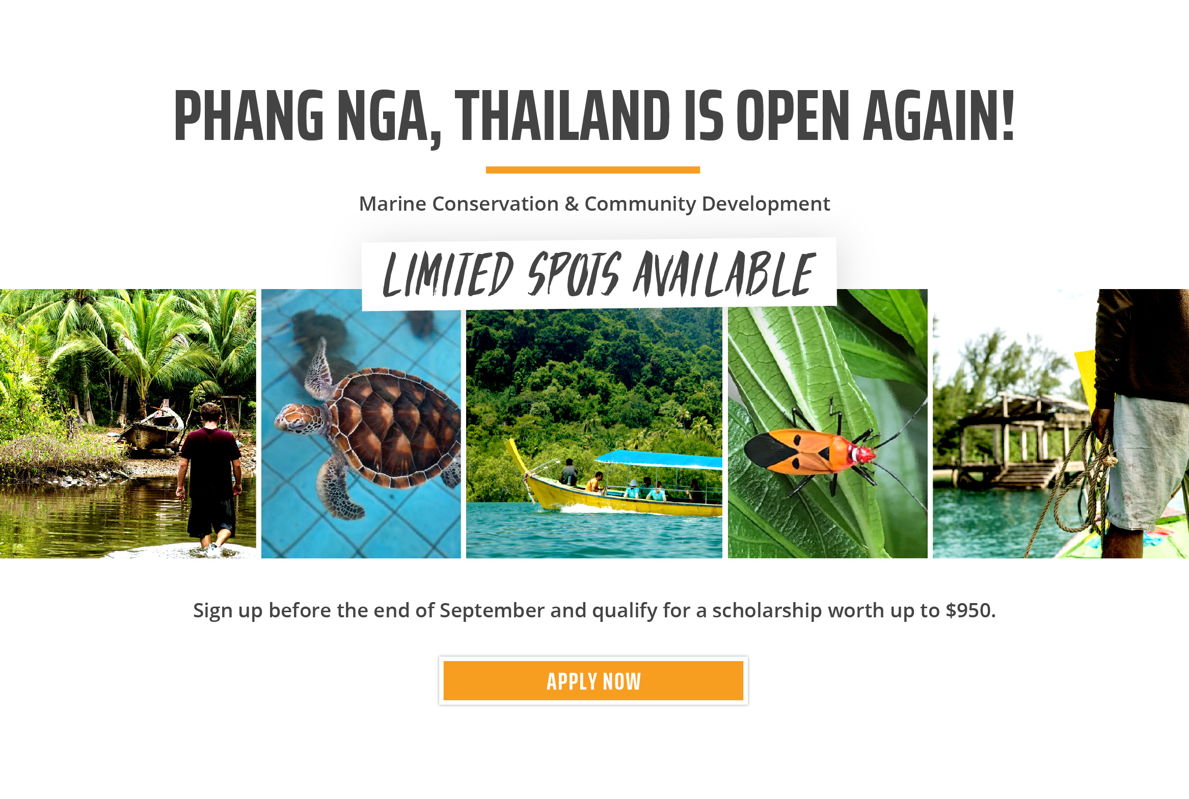 AUS/CAN Thailand Reopening